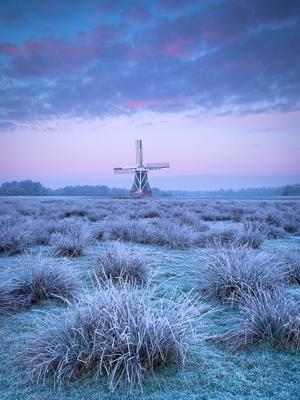 Behind the Photo: Frozen