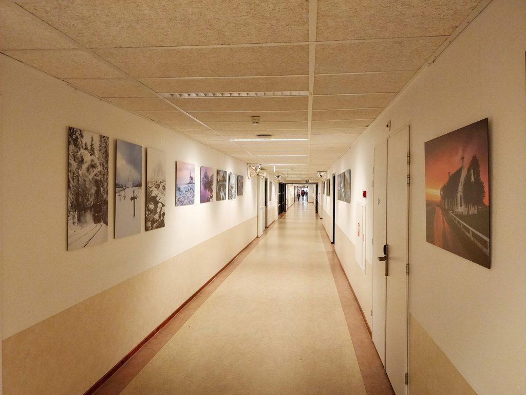 Nieuwe expositie in ziekenhuis