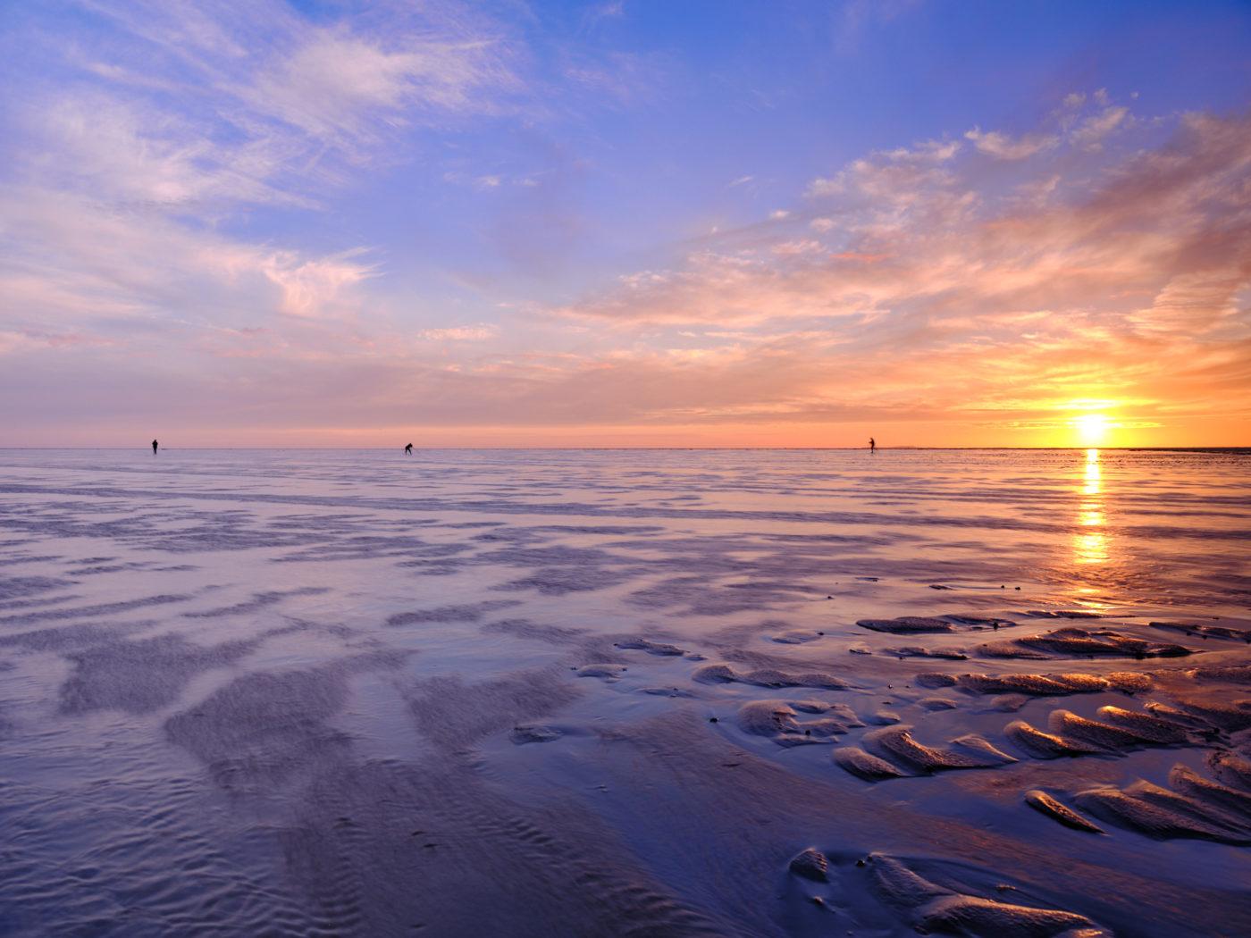 Fotograferen op een grote zandplaat | Landschapsfotograaf Harmen Piekema
