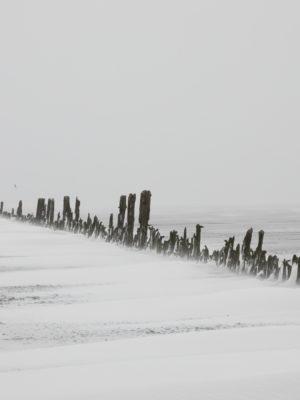 Sneeuwstorm Darcy