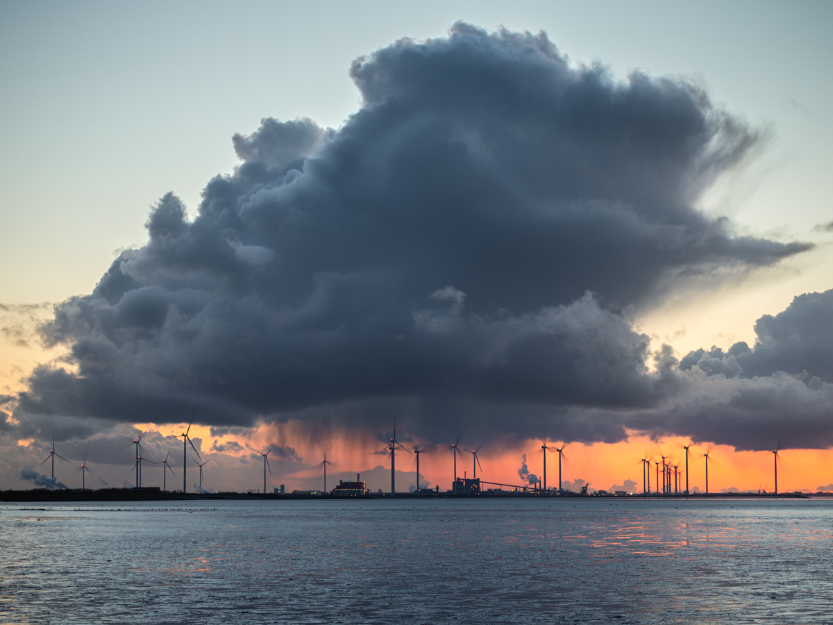 Enorme bui | Landschapsfotograaf Harmen Piekema
