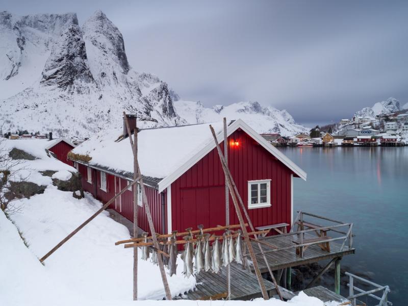Stockfish door Groninger landschapsfotograaf Harmen Piekema