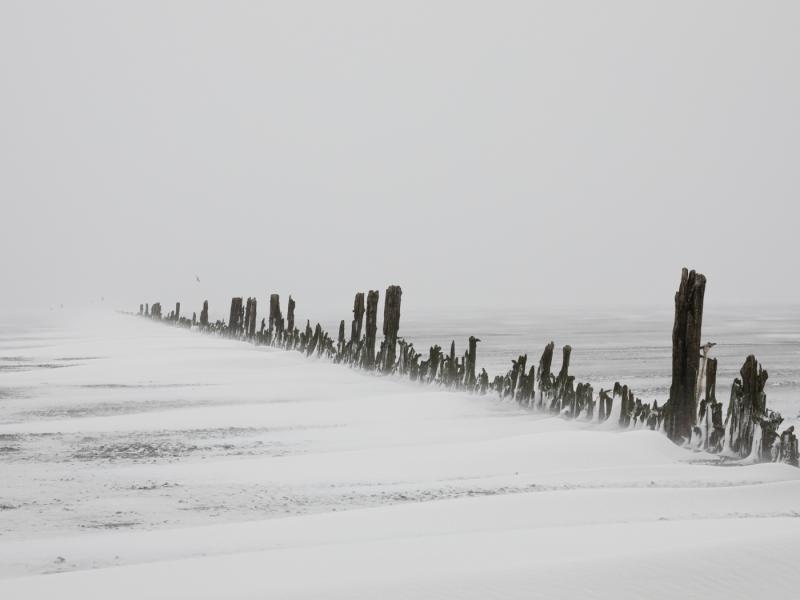 Blizzard door Groninger landschapsfotograaf Harmen Piekema