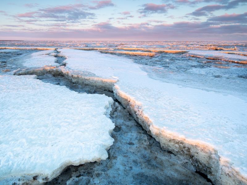 Wadden door Groninger landschapsfotograaf Harmen Piekema